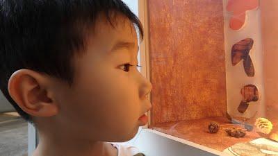 国語の学童 よみかきのもり 作文の検診 エア体験談 画像 イメージ 20151006
